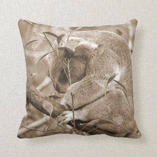 sepia c abajo el dormir de la cabeza de la koala cojín decorativo