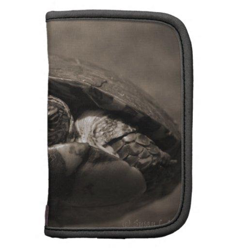 Sepia centrada de madera adornada de la tortuga a  planificadores