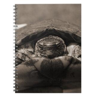 Sepia centrada de madera adornada de la tortuga a  libros de apuntes con espiral