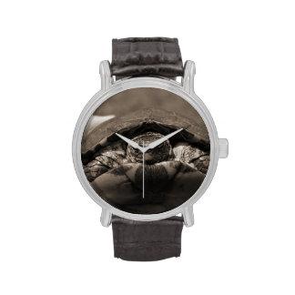 Sepia centrada de madera adornada de la tortuga a  relojes de pulsera