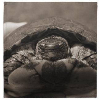 Sepia centrada de madera adornada de la tortuga a  servilleta