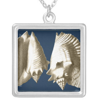 Sepia Conch Seashells Silver Plated Necklace