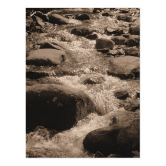 Sepia Creek Photo Postcard