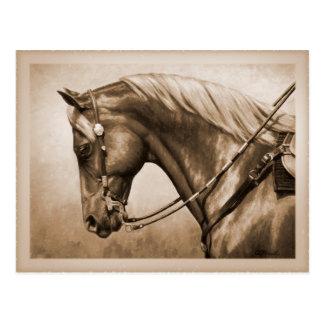 Sepia cuarta occidental del caballo tarjeta postal