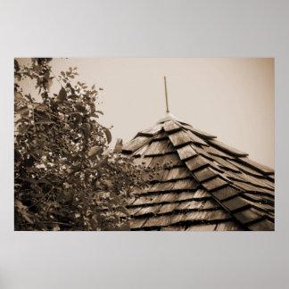 Sepia de madera del árbol del cielo de la cúpula d posters