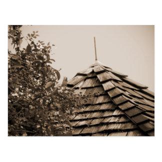 Sepia de madera del árbol del cielo de la cúpula postal