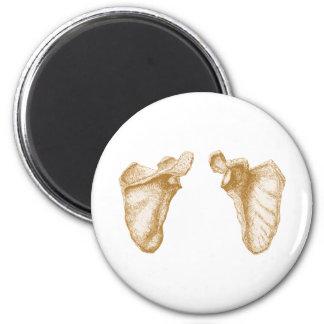 Sepia del omóplato imán redondo 5 cm