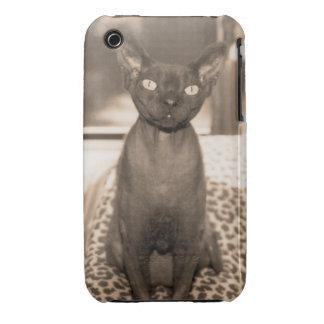 Sepia Devon Rex Cat iphone 3 Case-Mate iPhone 3 Case