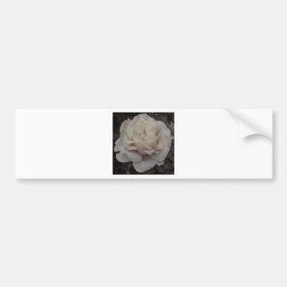 Sepia Dew Drop Rose Bumper Sticker