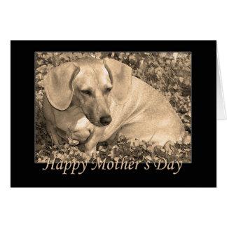 Sepia feliz del dachshund del día de madre tarjeta de felicitación