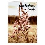 Sepia Fireweed; Yukon Territory, Canada Card