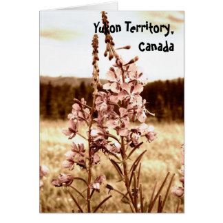 Sepia Fireweed; Yukon Territory, Canada Greeting Card
