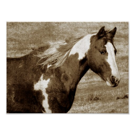 Sepia Flashy Mare Poster