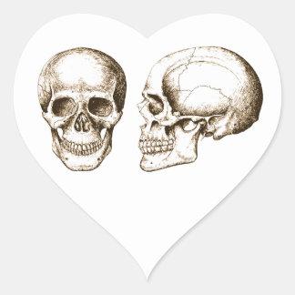 Sepia Front Side Human Skull Heart Sticker