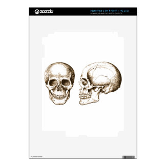 Sepia Front Side Human Skull iPad 3 Decals