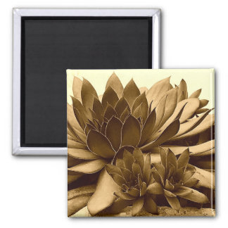 Sepia Hens and Chicks Magnet