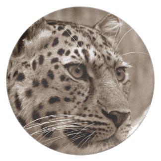 Sepia hermosa del retrato del leopardo platos de comidas