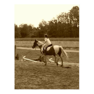 Sepia Horse Items Postcard