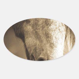 Sepia Horse Stickers