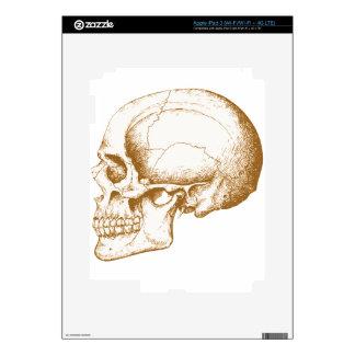 Sepia Human Skull iPad 3 Decal