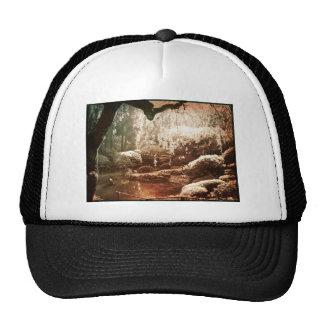 Sepia Japanese Garden Trucker Hat