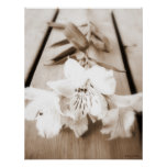 Sepia Lily Poster