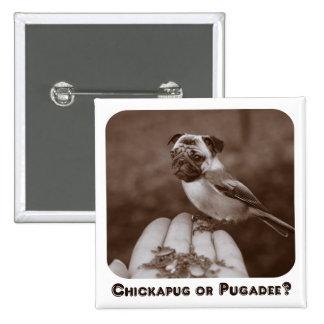 ¿Sepia linda Chickapug o Pugadee Botón Pins