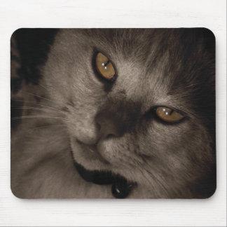 Sepia Mousepad del gato