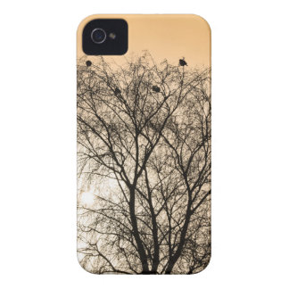 Sepia Roosting birds iPhone 4 Cover