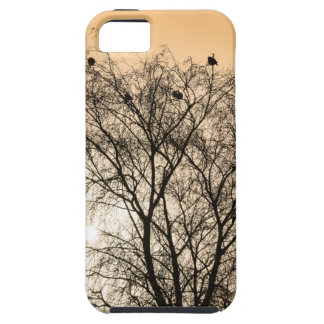 Sepia Roosting birds iPhone SE/5/5s Case
