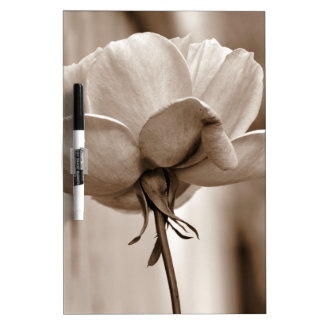 Sepia Rose Flower Photo Design Dry-Erase Board