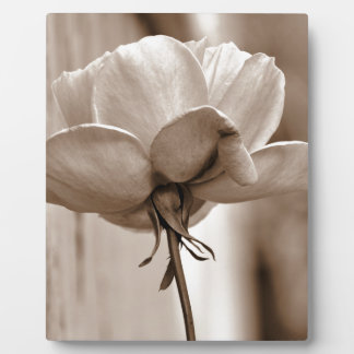 Sepia Rose Flower Photo Design Plaque