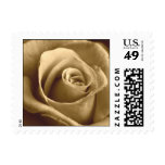 Sepia Rose Postage Stamp