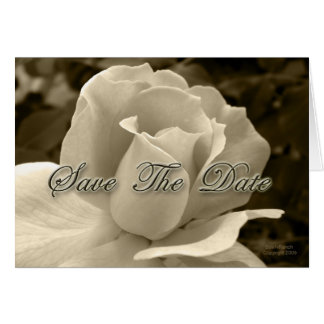 Sepia Rose Save the Date Cards