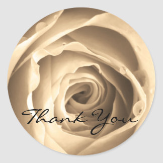 Sepia Rose, Thank You Classic Round Sticker