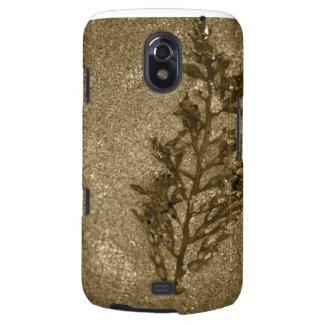 Sepia Sandy Beach Textures Samsung Galaxy Nexus Cover