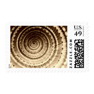 Sepia Seashell Abstract Postage Stamp