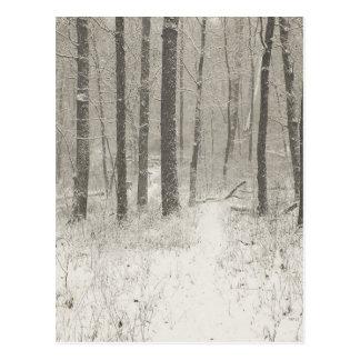 Sepia Snow Scene Postcard