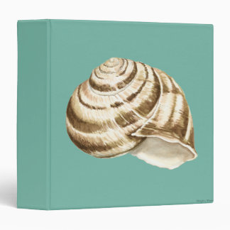 Sepia Striped Shell on Teal Binder