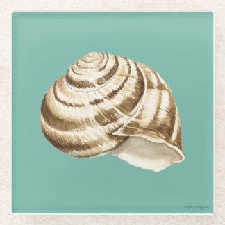 Sepia Striped Shell on Teal Glass Coaster