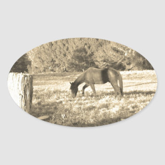 Sepia tone Brown horse and fence Oval Sticker