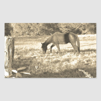 Sepia tone Brown horse and fence Rectangular Sticker