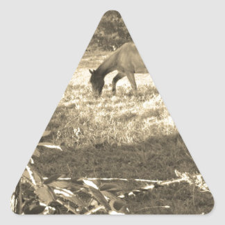 Sepia tone Brown horse and fence Triangle Sticker