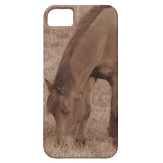 Sepia Tone Brown Horse Grazing On Field iPhone SE/5/5s Case