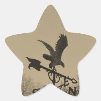 Sepia Tone Eagle Weather vane Star Stickers