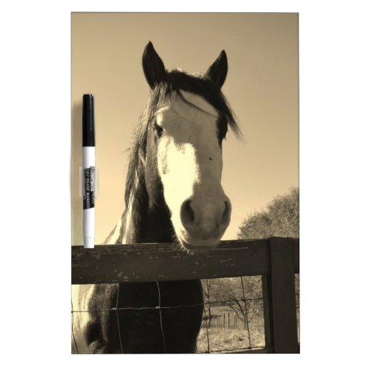 Sepia Tone Horse Dry Erase White Board