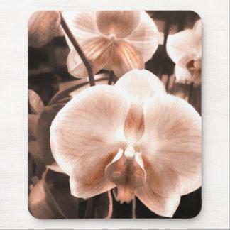 Sepia Tone Phaleonopsis Orchid Mouse Pad