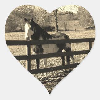 Sepia Tone  Photo of  black and white Horse Heart Sticker