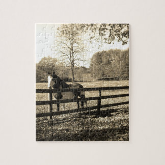 Sepia Tone Photo of black and white Horse Puzzle