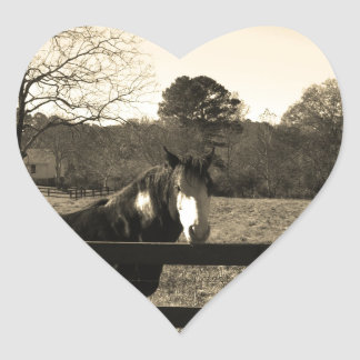 Sepia Tone  Photo of  brown  and white Horse Heart Sticker